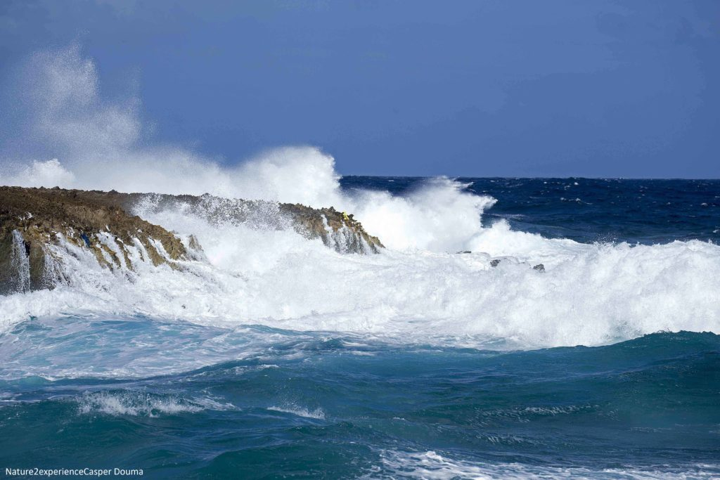Waves of Bonaire, east coast
