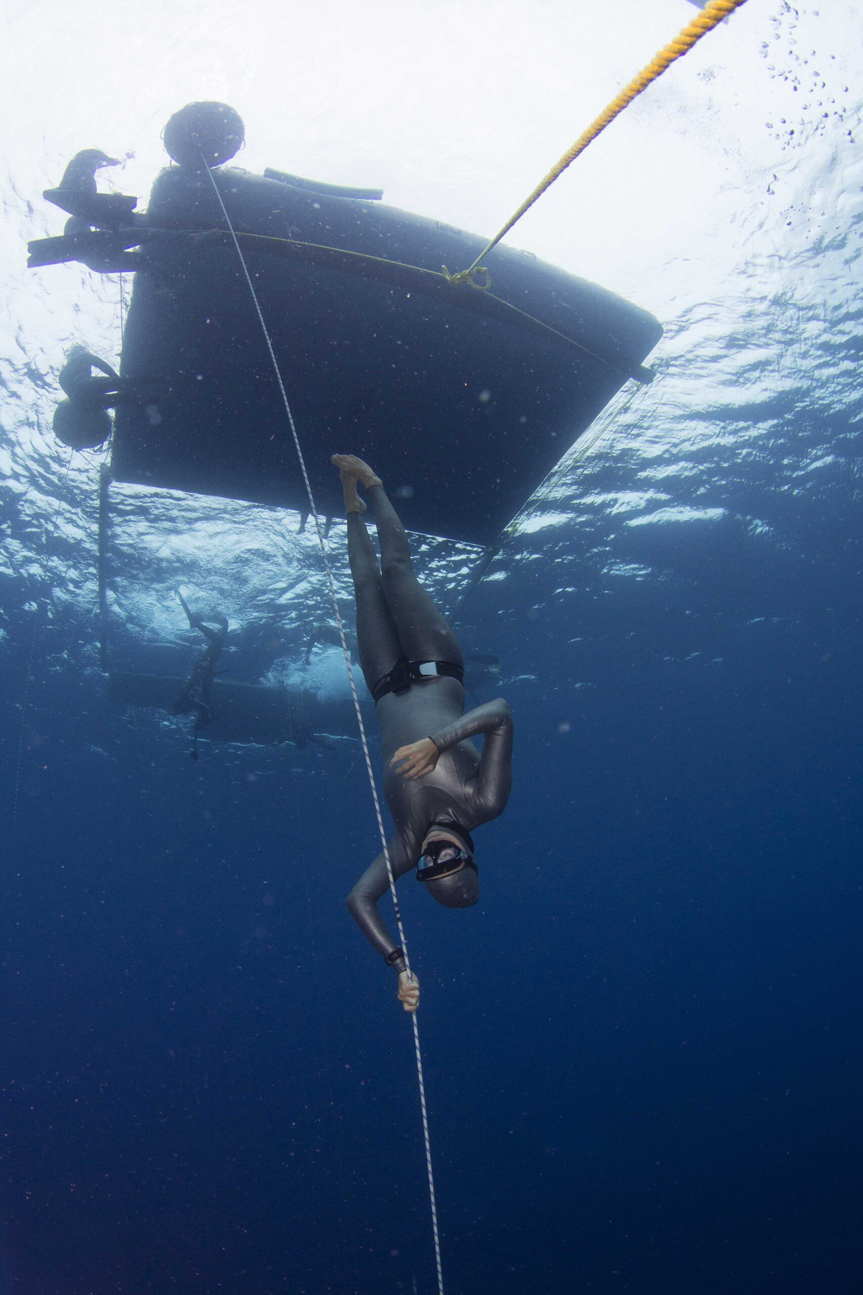 Freediving Bonaire Nature2experience, Carlos Coste, freediving Bonaire, Freediving Bonaire |Nature2experience