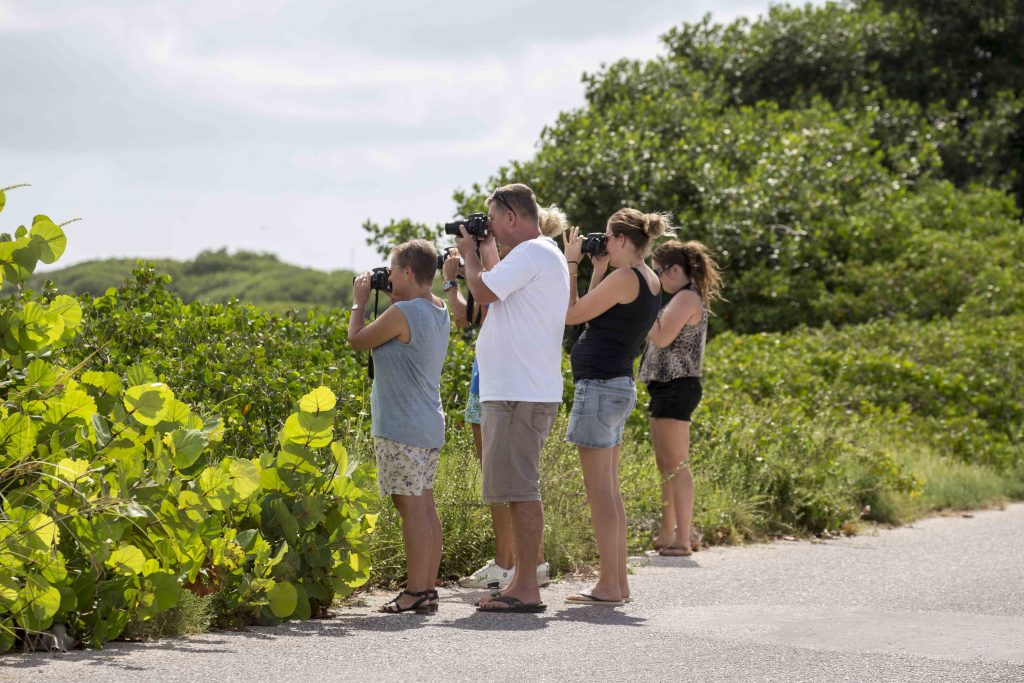 Photography Tours Bonaire