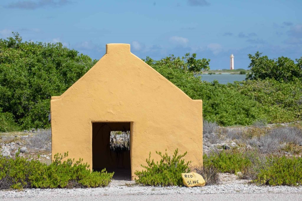 Bonaire Photography Tours