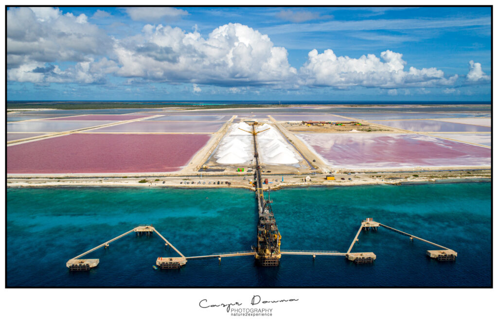 Top 50 pictures of Bonaire, Photographer Bonaire, Bonaire photographer, Salt Pans, Curoil