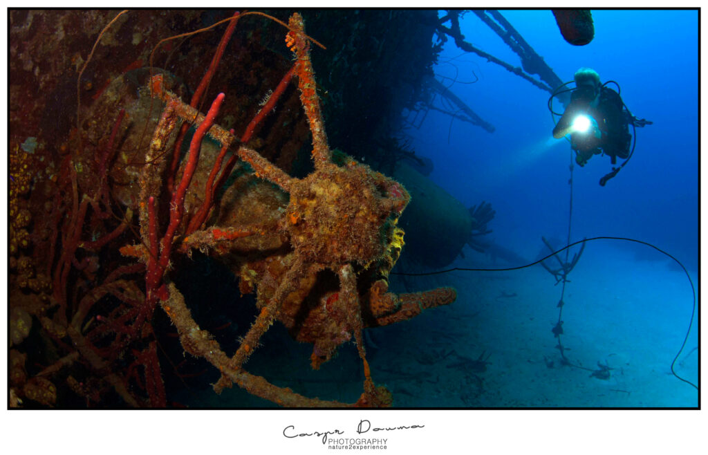 Top 100 pictures of Bonaire, Photographer Bonaire, Bonaire photographer, Hilma Hooker