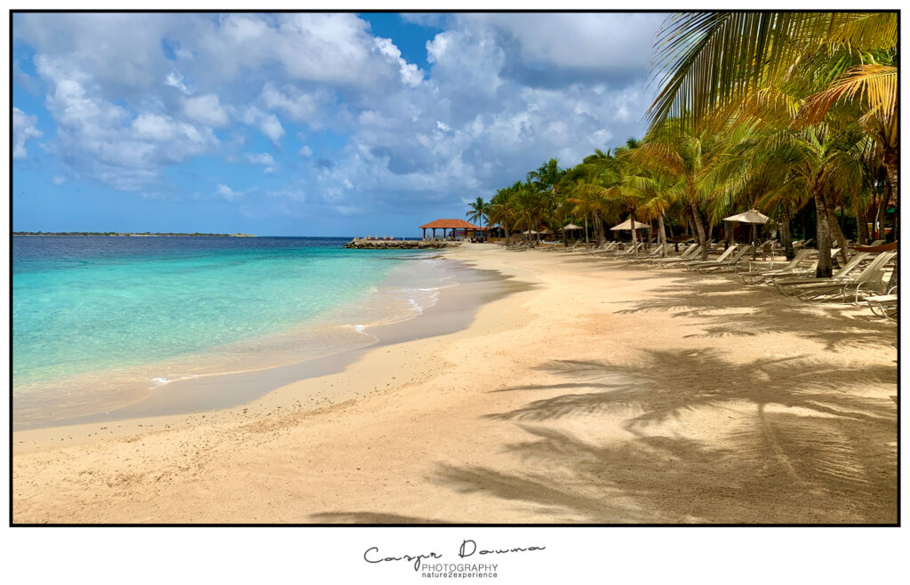 Harbour Village beach, Photographer Bonaire, Bonaire photographer