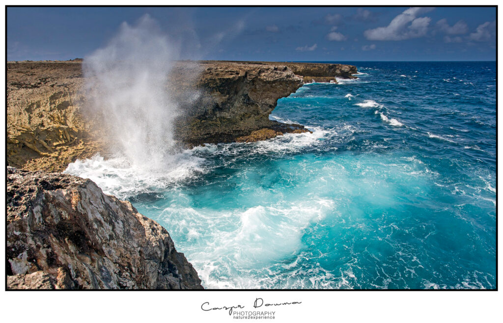 East coast of Bonaire. Washington Slagbaai, Photography tours on Bonaire Trip on Bonaire, Photographer Bonaire
