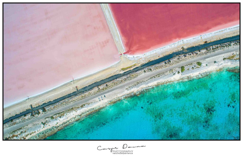 Salt Pans Bonaire Colors, Photographer Bonaire, Bonaire photographer