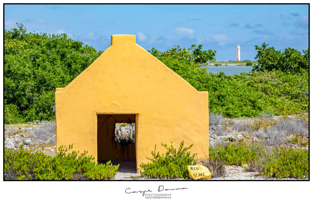 Bonaire Photography, Bonaire Photographer, Red slave huts, Lighthouse Wilemstoren
